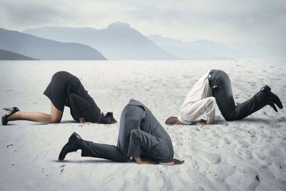 web-3-professionals-with-head-in-sand.jpg