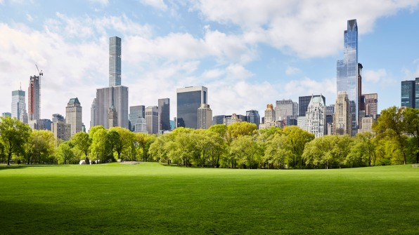 i-1-trees-save-cities-500-million-every-year