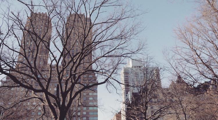 NYCCentralPark