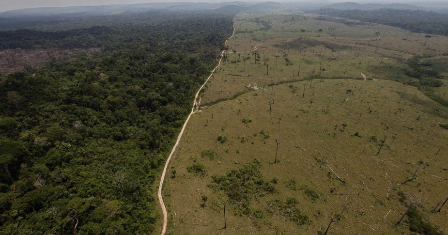 AP-Brazil-Amazon-Destruction